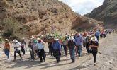 Más 800 personas se sumaron a la Romería en honor a la Virgen del Carmen benéfica para la Asociación ALDEA