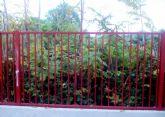 UPyD Murcia pide 'celeridad' para solucionar el problema de insalubridad que afecta al CEIP 'El Molinico' en La Alberca
