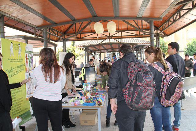 Los estudiantes de la UCAM conocen el mundo del voluntariado - 2, Foto 2