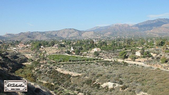 Cerca de 40 personas descubren el origen de la Ciudad de Totana con la Asociación Kalathos - 11