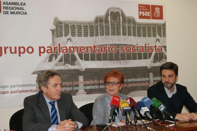 El PSOE resume 2014 como el año que cambió el presidente para no cambiar nada y reprocha la falta de diálogo y el bloqueo de las iniciativas parlamentarias más relevantes - 1, Foto 1