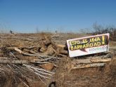 Denuncian la destrucción de una alameda en la Gurulla