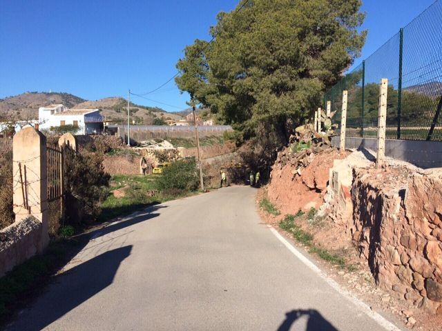 Protección Civil y la Brigada Forestal limpian el arbolado que ocupaba la vía en el Camino de los Mortolitos - 4, Foto 4
