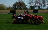 Exitoso fin de semana para el Club de Rugby Totana en todas sus categor�as