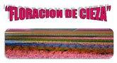 """""""El Cañico"""" organiza una ruta guiada por la ribera del río Segura con motivo de la 'Floración de Cieza'"""