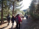 El club senderista de Totana celebró el 'Día del árbol'