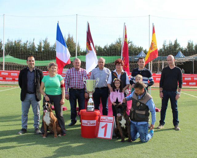 El V Concurso Nacional Canino exhibió 300 ejemplares de más de 75 razas caninas en Puerto Lumbreras - 2, Foto 2