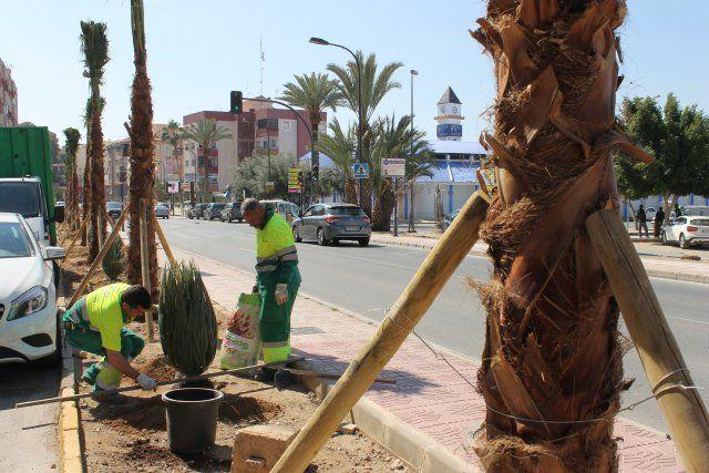 El ayuntamiento refuerza la limpieza e incrementa las obras de ingeniería urbana, Foto 4