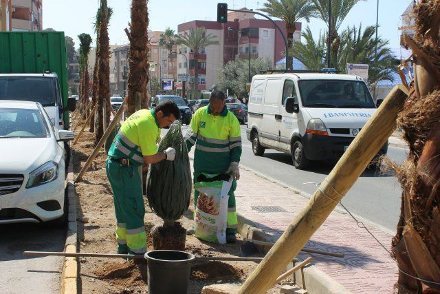 El ayuntamiento refuerza la limpieza e incrementa las obras de ingeniería urbana, Foto 5