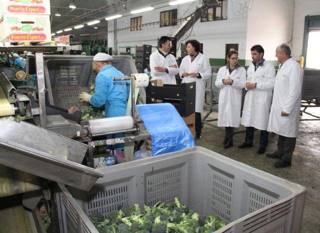 La Alcaldesa reitera su compromiso con la agricultura y ganadería como motor económico y sector estratégico para la creación de empleo - 2, Foto 2