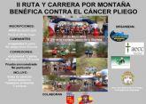 El 31 de mayo, la RM 2015 llega a Pliego