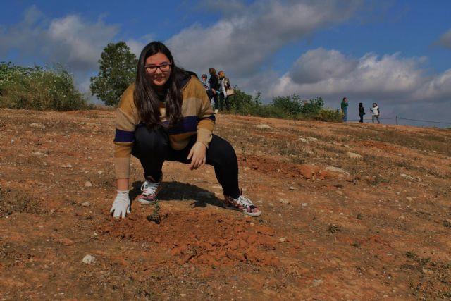 Éxito de participación en la jornada de plantación de árboles en El Pasico - 1, Foto 1