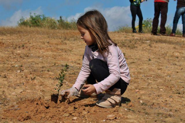 Éxito de participación en la jornada de plantación de árboles en El Pasico - 2, Foto 2