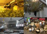 La Guardia Civil desmantela una sofisticada plantación de marihuana instalada en un edificio embargado en Murcia