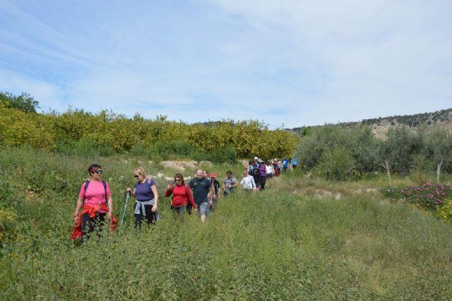 Más de 40 senderistas disfrutan de la ruta de Senderismo que tuvo lugar entre Ricote y Ojós - 4, Foto 4