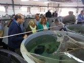 Martínez-Cachá estudia con el sector las posibles fórmulas para aumentar la operatividad de la actividad acuícola en la Región