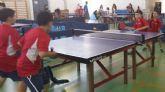 Tenis de mesa. resultados fin de semana. Campeonato Autonómico por equipos Región de Murcia