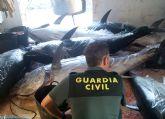 La Guardia Civil decomisa en aguas de San Pedro del Pinatar ocho atunes rojos capturados ilícitamente