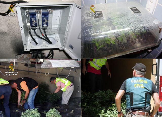 La Guardia Civil desmantela dos invernaderos clandestinos de marihuana en Murcia - 2, Foto 2
