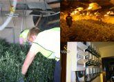 La Guardia Civil desmantela dos invernaderos clandestinos de marihuana en Murcia