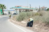 Proceden a limpiar los arcenes de la carretera Mazarr�n-Puerto