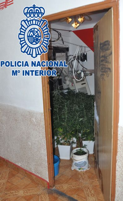 La Policía Nacional detiene a dos personas por tráfico de drogas y defraudación de fluido eléctrico - 1, Foto 1