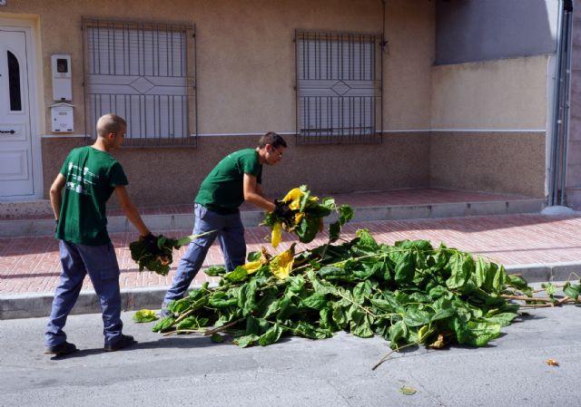Los alumnos del programa de empleo y formación juvenil sobre jardinería y agricultura colaboran en las podas municipales - 2, Foto 2