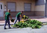 Los alumnos del programa de empleo y formación juvenil sobre jardinería y agricultura colaboran en las podas municipales