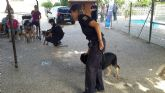 Fundamifp acogió la una exhibición de la Unidad Canina de Policía Nacional en Murcia