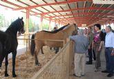 El Ayuntamiento de Puerto Lumbreras reducirá la tasa que tienen que pagar los ganaderos por el uso del recinto del Mercado de Ganado