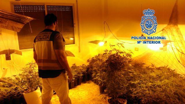 Operativo en Torre Pacheco contra el tráfico ilegal de personas da lugar a dos detenciones por tráfico de drogas - 1, Foto 1