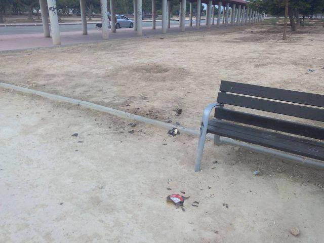 Alternativa Socialista denuncia el estado lamentable de la pista y el parque del barrio de San Blas - 1, Foto 1