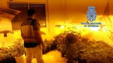 Operativo en Torre Pacheco contra el tráfico ilegal de personas da lugar a dos detenciones por tráfico de drogas