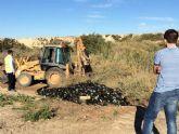 Retiran miles de envases de vidrio que habían sido depositados de forma clandestina en un paraje junto al río Guadalentín