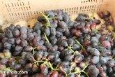 Martínez-Cachá destaca que 'la innovación y el desarrollo sitúan a los productores de uva de mesa murcianos líderes del mercado internacional'