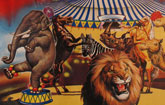La nueva Concejalía de Protección Animal eleva una moción al pleno para prohibir los circos con animales en Totana