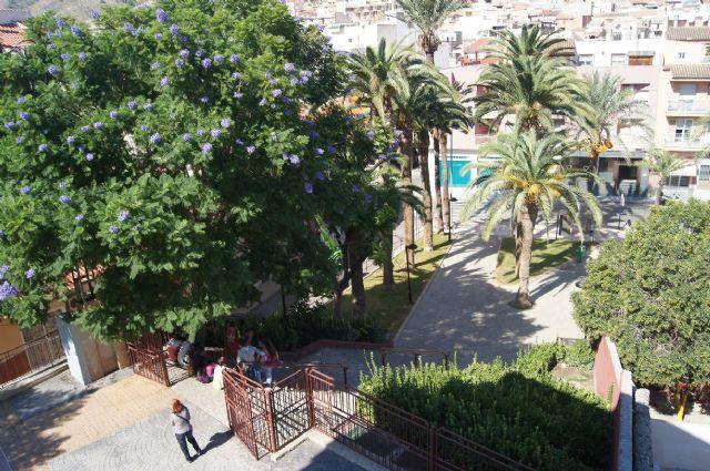 Realizan un plan de poda y mantenimiento de las palmeras en los parques y jardines de Totana - 5, Foto 5