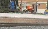 Cambiemos Murcia pide explicaciones sobre la tala de siete árboles en la estación de tren