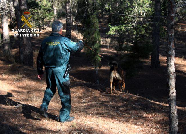 Localizan con vida y rescatan a un ciclista accidentado en Sierra Espuña - 2, Foto 2