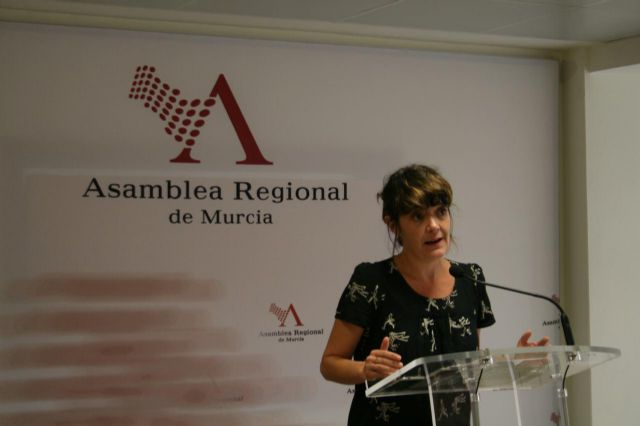 La Comisión de Pobreza solicitará información urgente a la Consejería de Familia para conocer con exactitud cuál es la situación real de pobreza en la Región de Murcia - 2, Foto 2