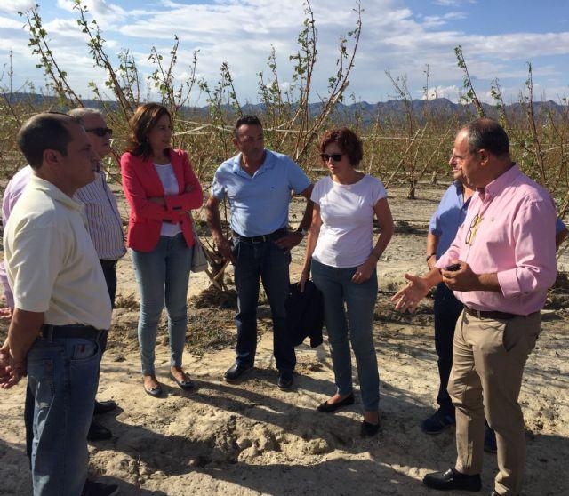 La Consejería valora en 6,5 millones los daños causados por el granizo - 1, Foto 1