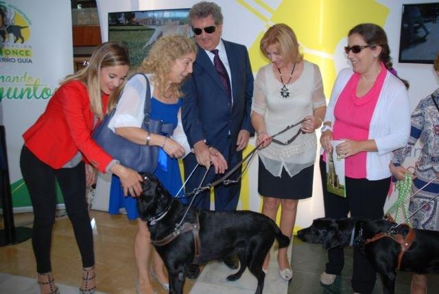 Violante Tomás destaca el impulso de la Ley de perros de asistencia para promover la autonomía de las personas con discapacidad - 1, Foto 1