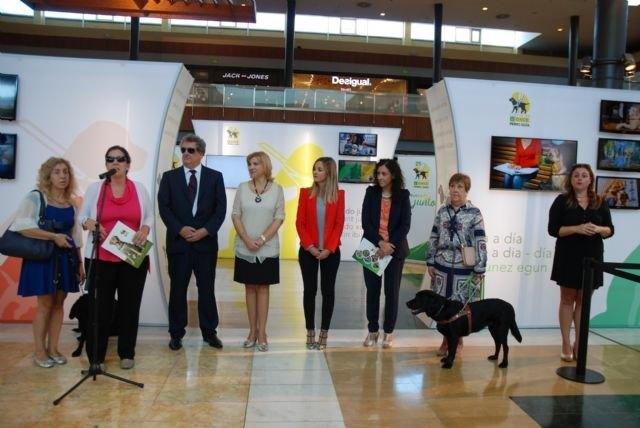 Violante Tomás destaca el impulso de la Ley de perros de asistencia para promover la autonomía de las personas con discapacidad - 2, Foto 2
