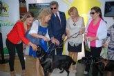 Violante Tomás destaca el impulso de la Ley de perros de asistencia para promover la autonomía de las personas con discapacidad