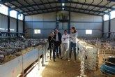 El sector ovino y caprino regional supone el 10,7 por ciento de la producción final ganadera y genera 78 millones de euros