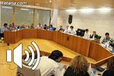 Piden que se anule el acuerdo de reprobación al Consejo Rector de COATO aprobado en octubre del 2012 por el Pleno municipal