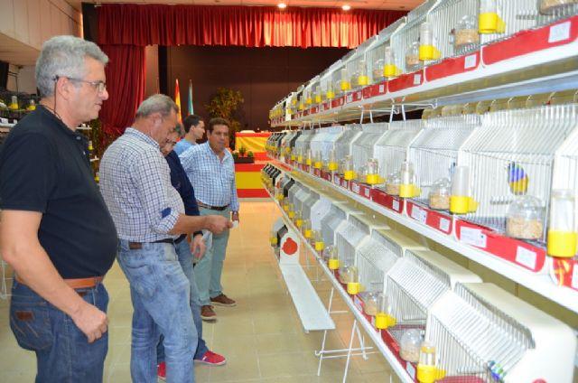 San Javier se convierte hoy y mañana en la capital de la ornitología con los mejores ejemplares de España - 1, Foto 1