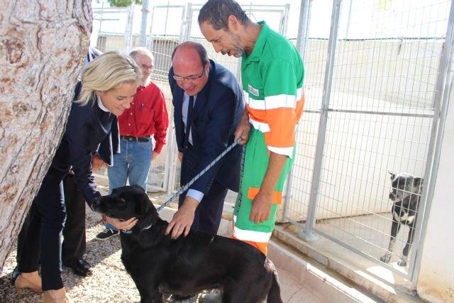 Pedro Antonio Sánchez anuncia que la Comunidad trabaja en una ley regional que establezca el ´sacrificio 0´ de animales - 1, Foto 1