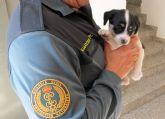 La Guardia Civil imputa a dos personas el abandono de un cachorro de perro