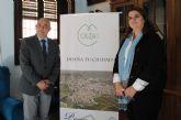 El Ayuntamiento abre a la participación ciudadana su estrategia integrada de desarrollo urbano sostenible